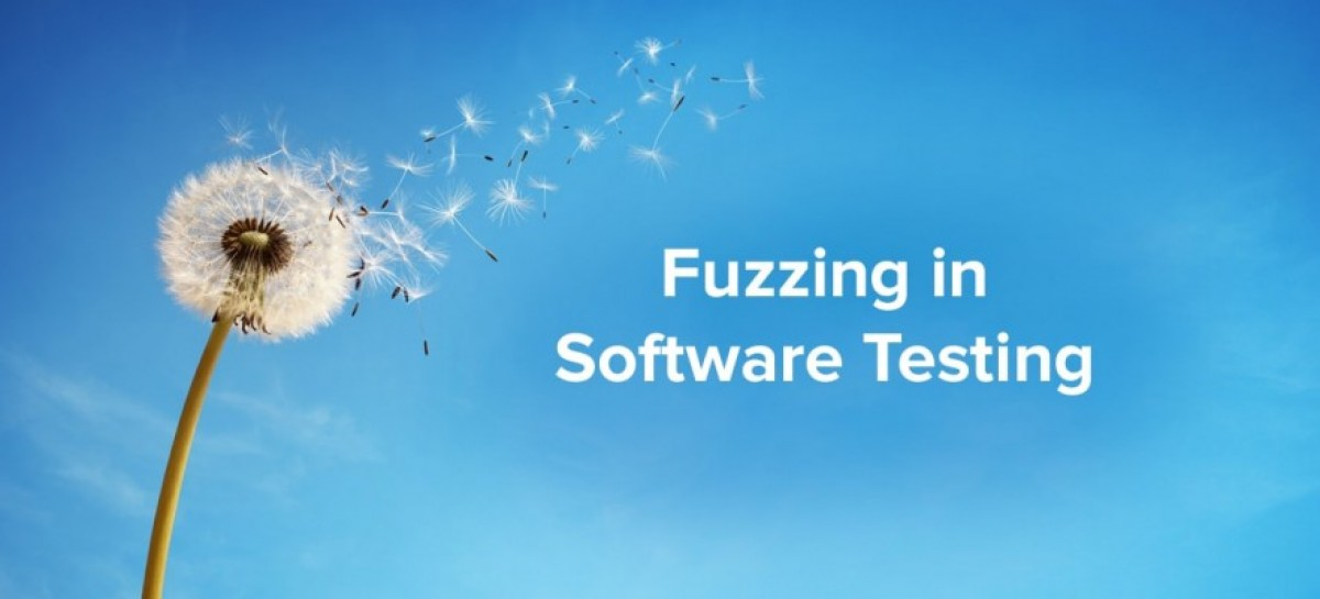 What is Fuzz Testing?