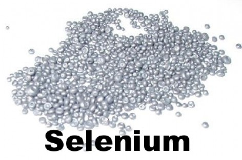 Selenium 2 makes automation debugging easier