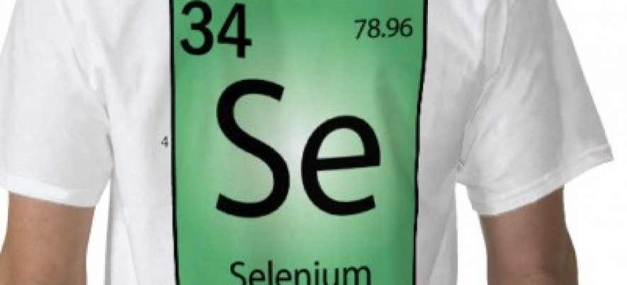 Selenium Auto Accept Self Signed SSL Certificates and Basic Authentication