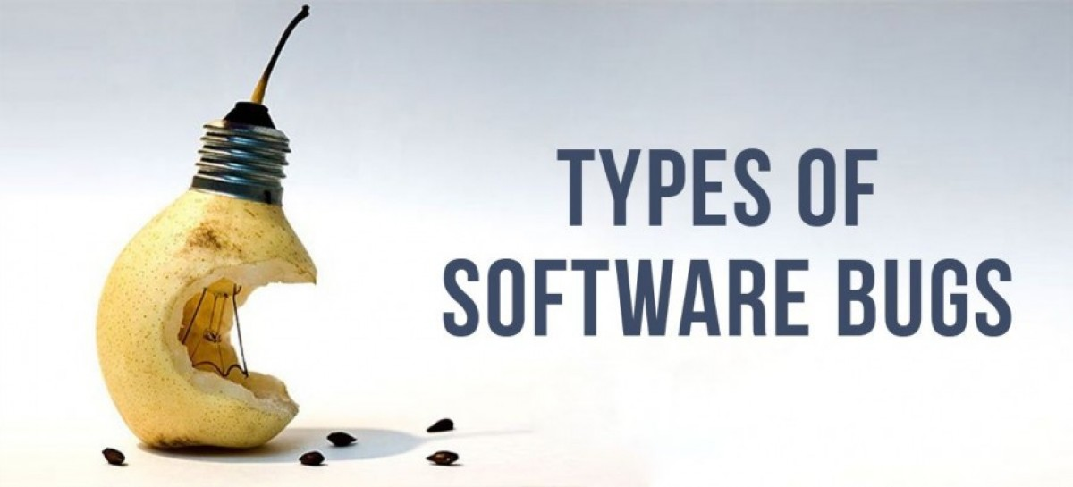 Types of Bugs in Software Testing