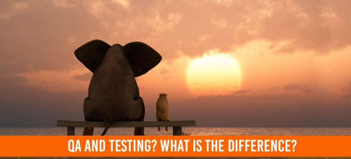 Difference Between QA and Testing