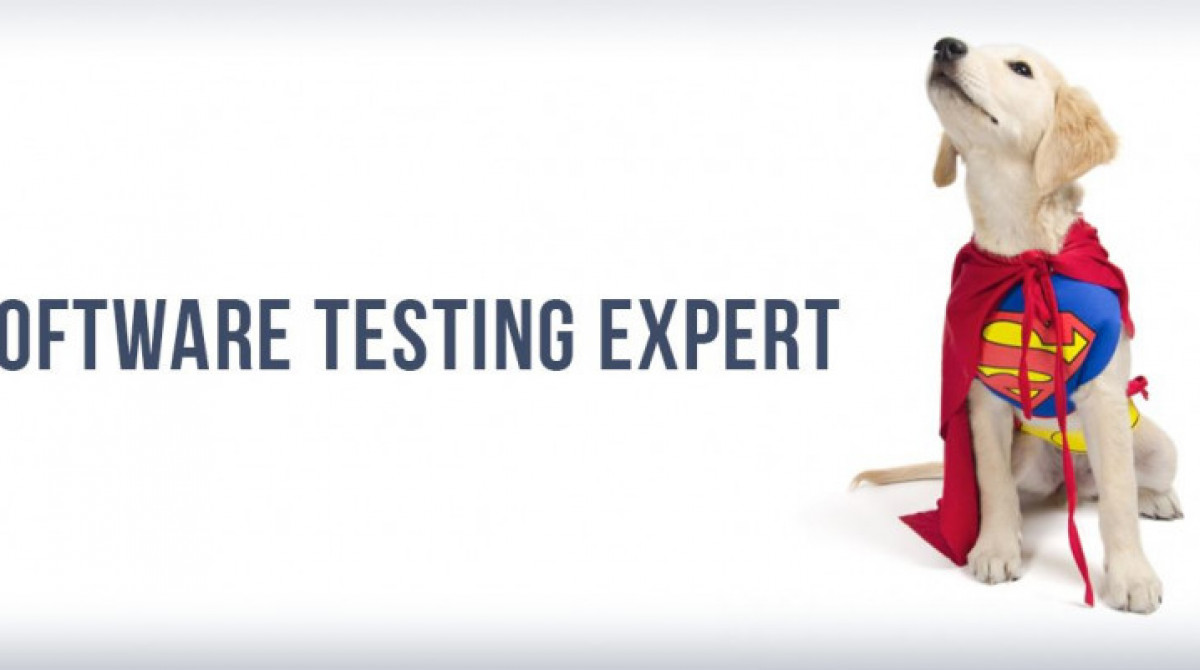 Do you consider yourself an expert in testing?