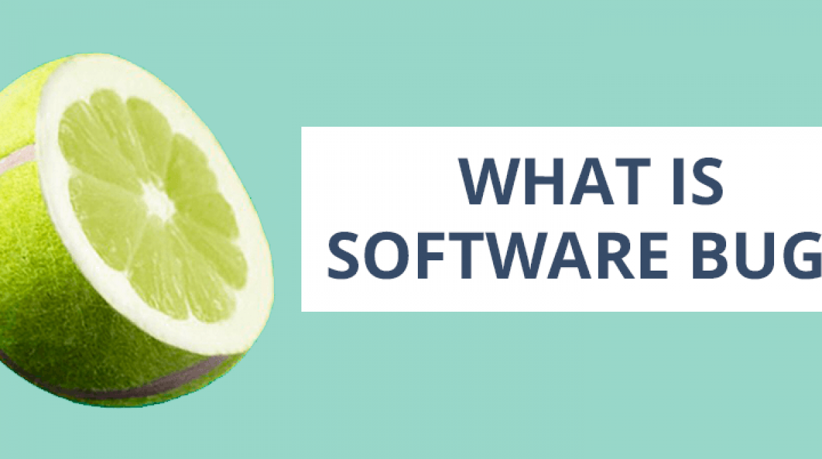 Software Bugs. Definition and Meaning
