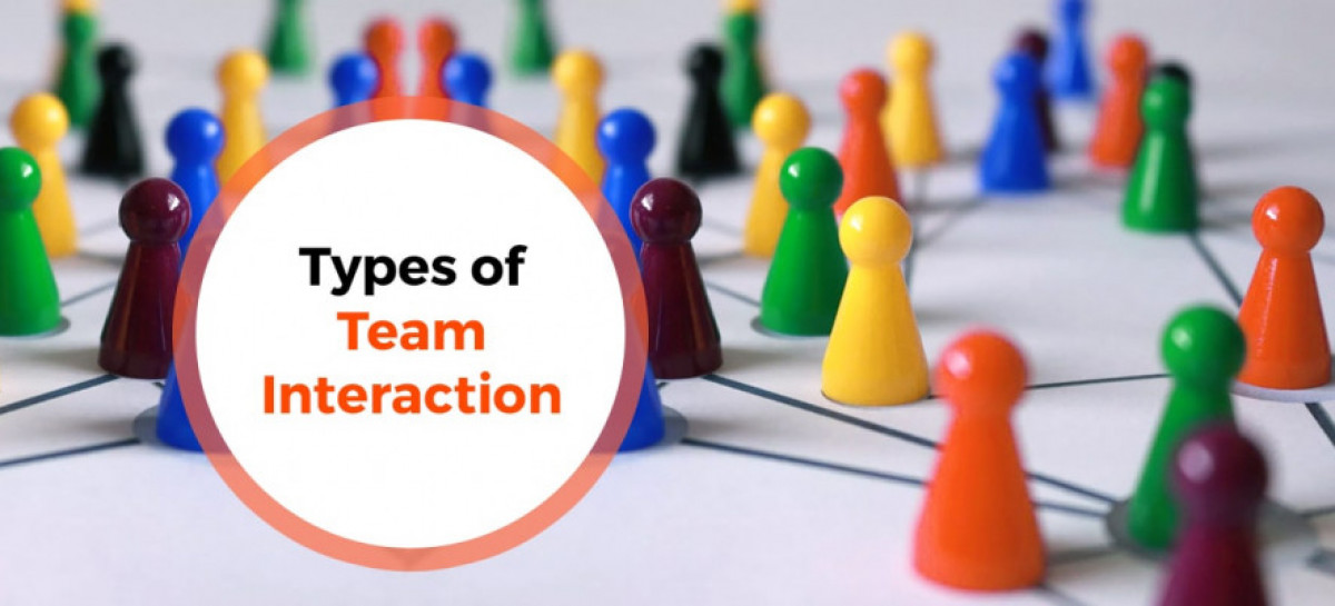 Types of Interaction within Software Project Team