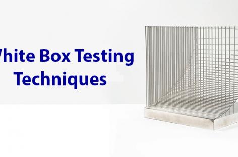 Techniques for White Box Testing