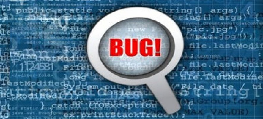 Successful Bug Reporting