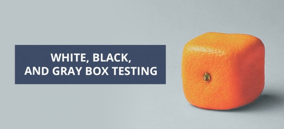 What Is The Difference Between White Box, Black Box And Gray Box Testing?
