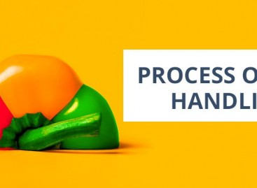 Software Bug Handling Process And Tools