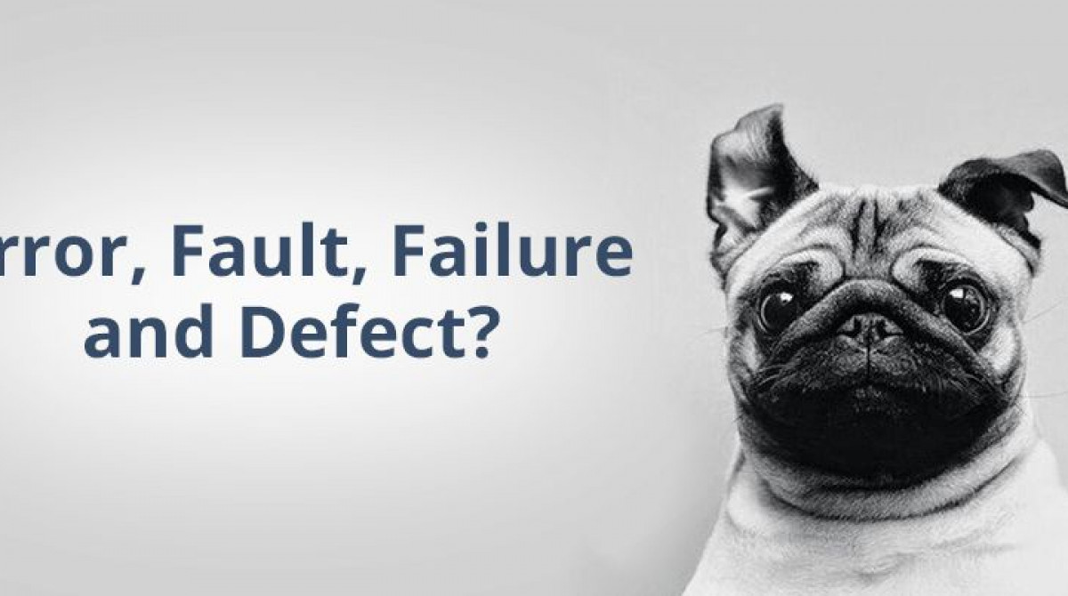 Definitions and Meaning: Error, Fault, Failure and Defect