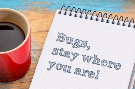 Preventing of Software Bugs and Bug Sources