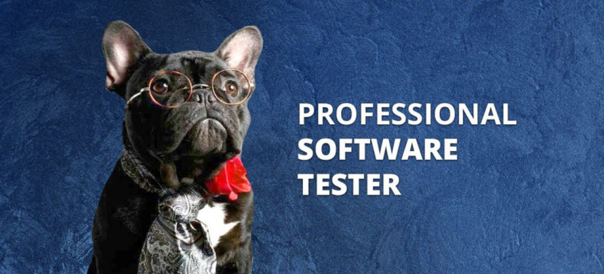 How to Become a Professional Software Tester?