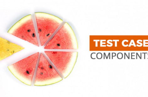 What are Main Attributes of a Test Case?