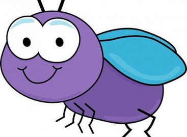 Bugs in Production: Causes and Solutions