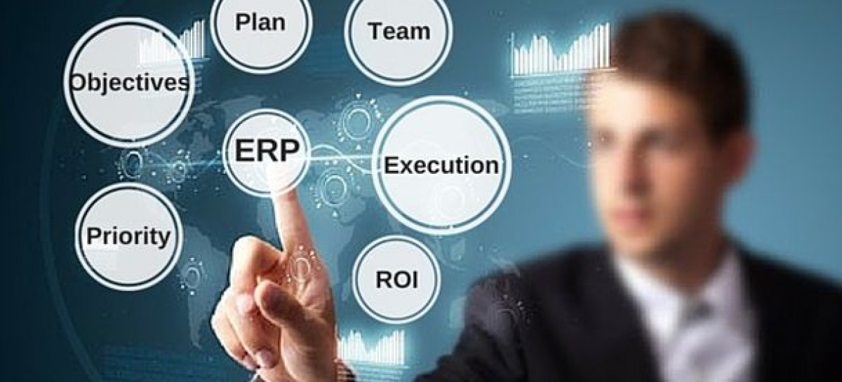 Enterprise Resource Planning in the IT Sphere
