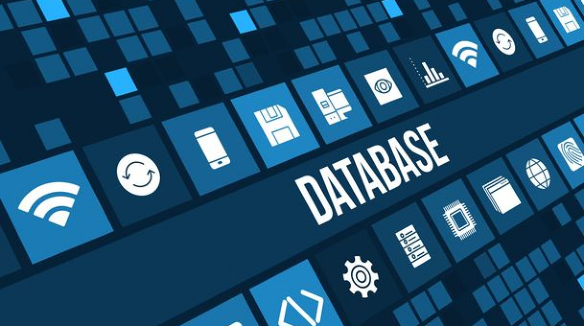 Relational Database Testing