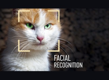 Forget about plastic surgery! Facial recognition is coming