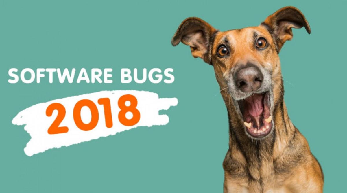 Top Software Bugs 2018