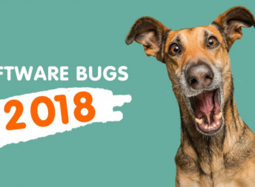 Top Software Bugs 2018