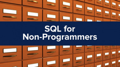 Basics of SQL for Non-programmers. Real Experience