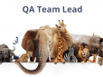 Guide for QA Leads: Responsibilities, Skills, Team Management