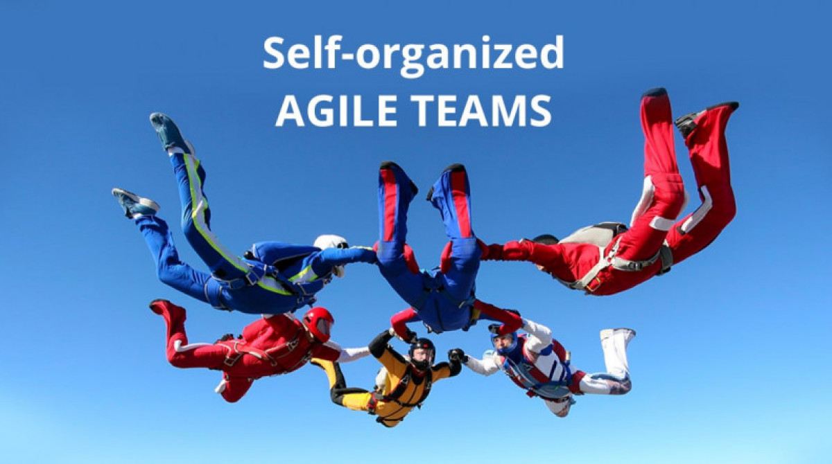 Self-organized Agile Teams are Real or No?