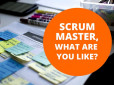The Qualities of Good SCRUM Master