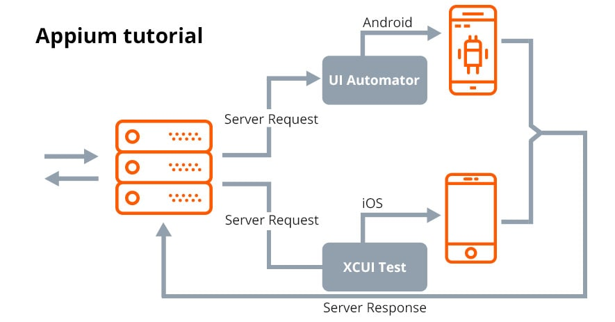 Principles of Appium. How it works on Android and iOS