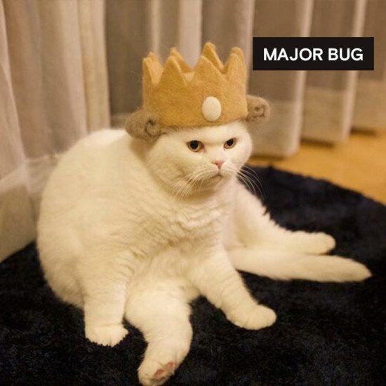 major bug