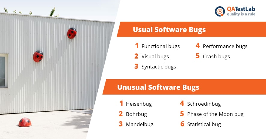 types_of_bugs